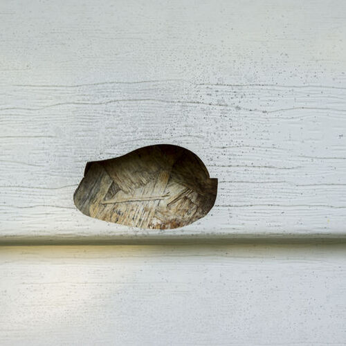 A Hole in Siding.
